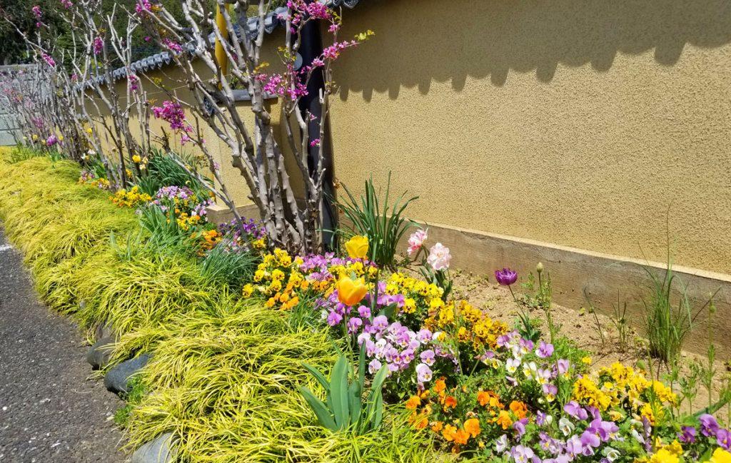 庭園に咲くお花